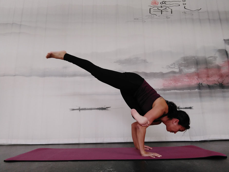 Yoga, Asanas, Eka Pada Galavasana, Entspannung, Meditation, Yoga Workshop, Yogalehrer Ausbildung, Yoga Teacher Training, Meditationstipps, Yoga Blog