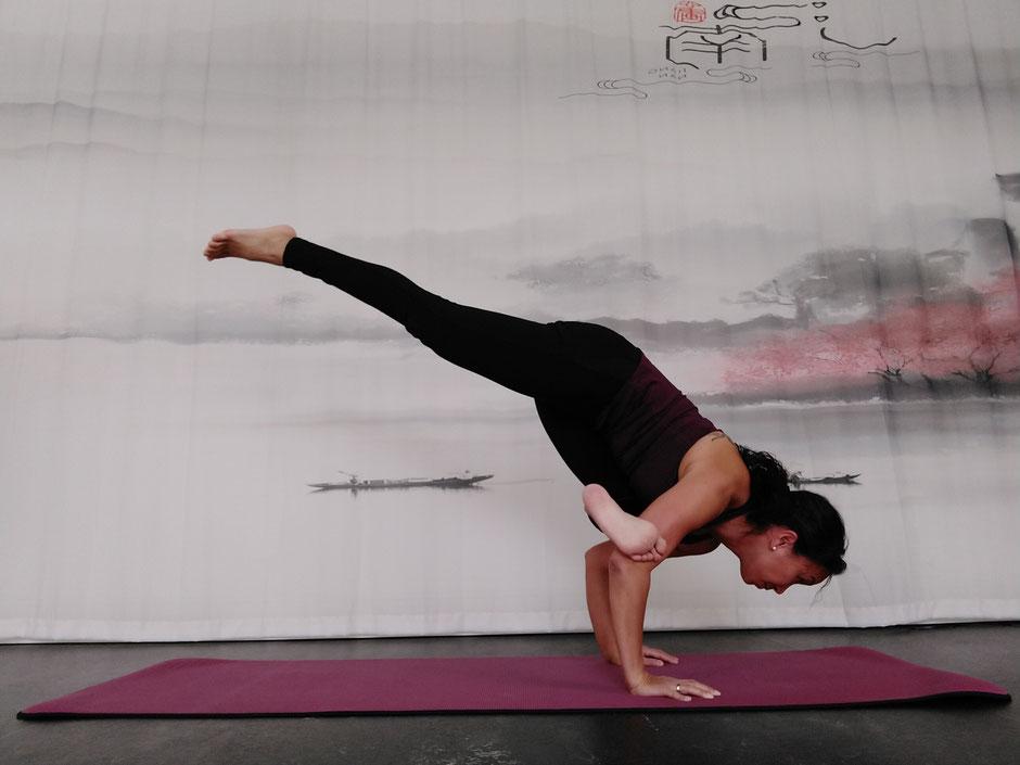 meine Welt des Yoga. Yoga, Asanas, Eka Pada Galavasana, Entspannung, Meditation, Yoga Workshop, Yogalehrer Ausbildung, Yoga Teacher Training, Meditationstipps, Yoga Blog