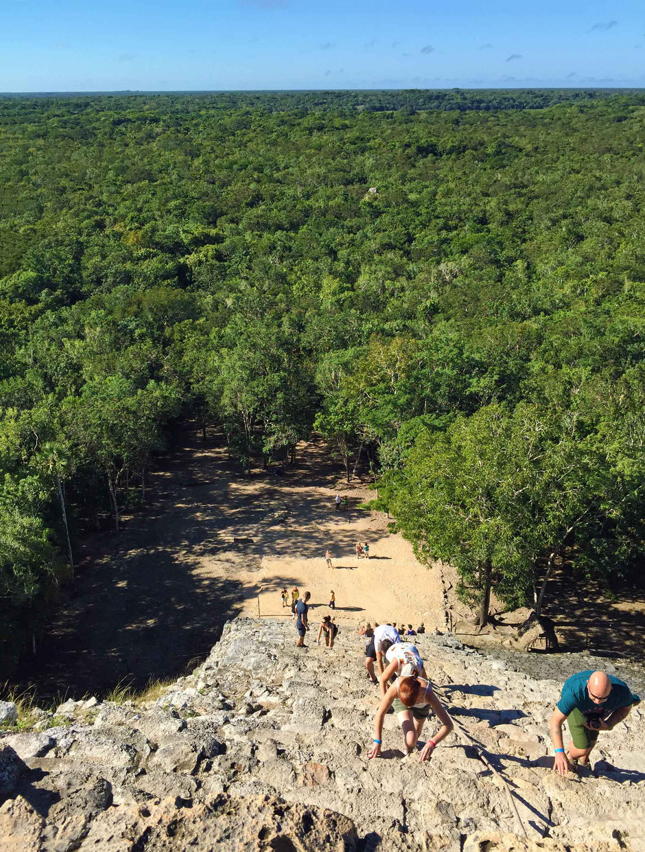 How to Easily Visit the Best Mayan Ruins - View from the top of Nohoch Mul Pyramid