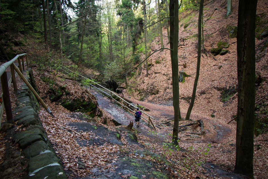 Hiking to Pravcicka Brana with kids in Bohemian Switzerland