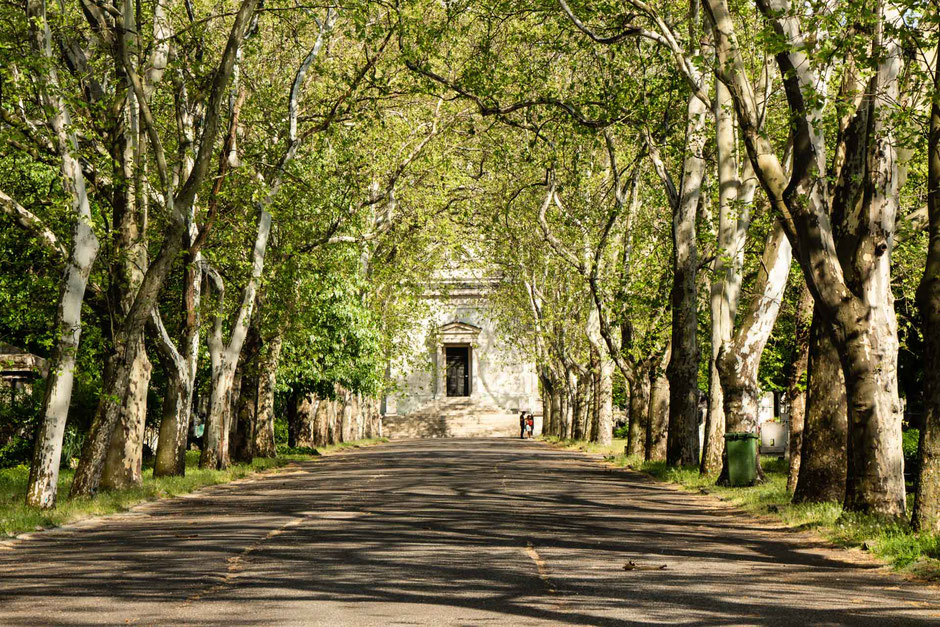 Fiume Road Graveyard Budapest