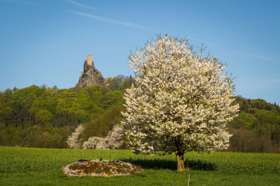 View of Trosky Castle in Bohemian Paradise