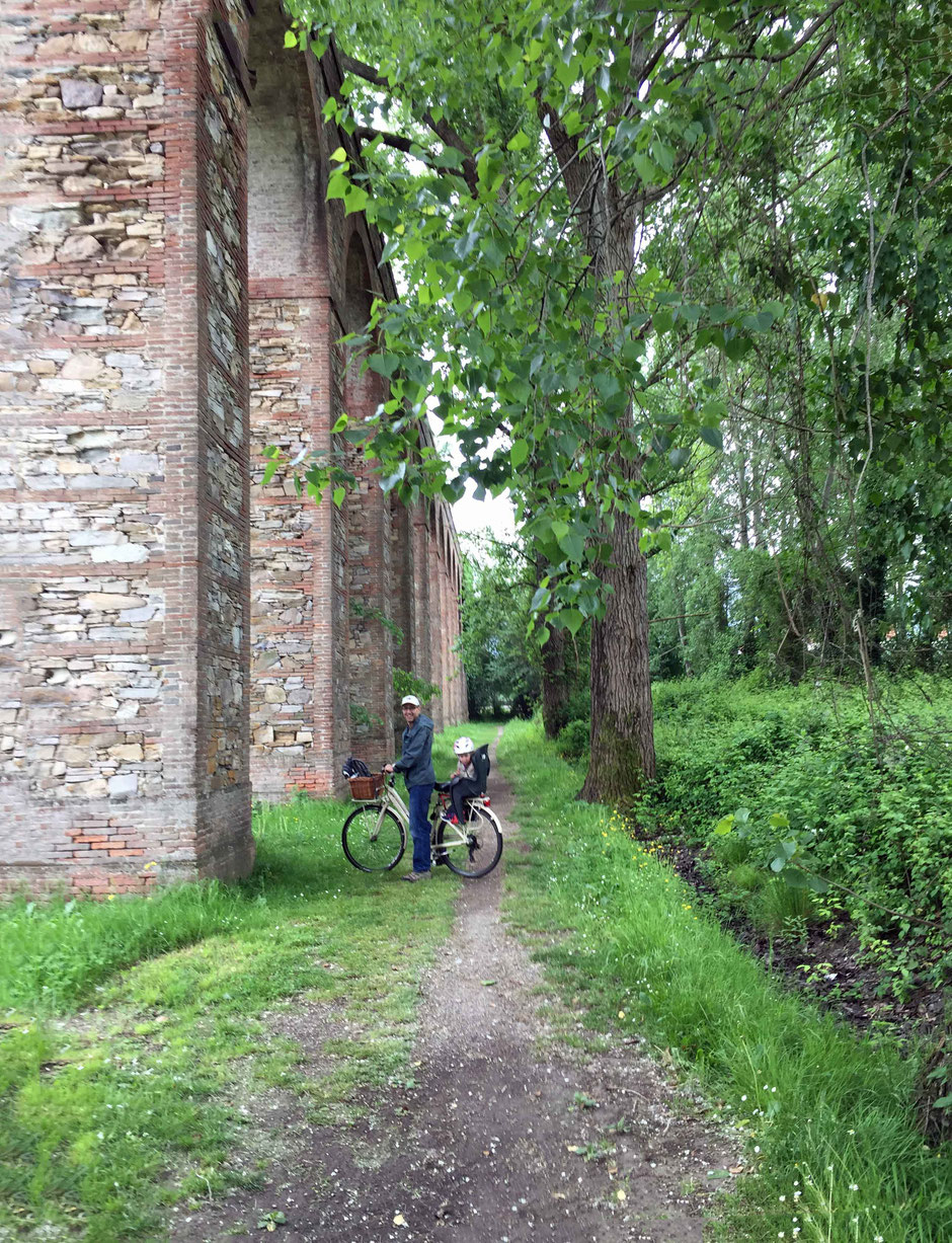 Cycling in lucca italy with kids