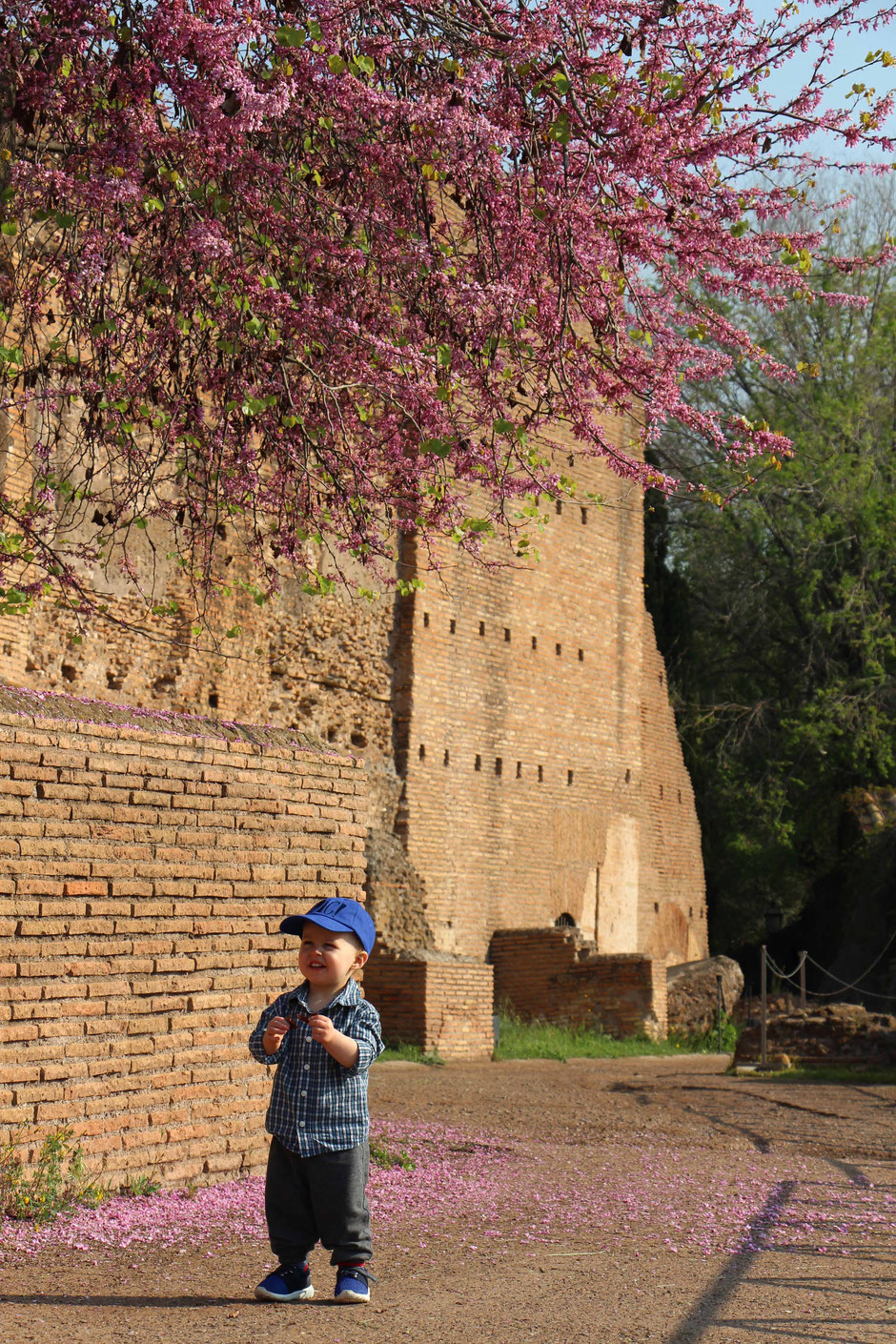 Palatine Hill Roman Forum With toddlers