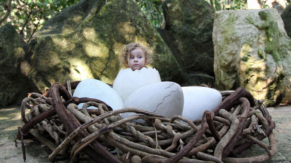 Xcaret with Toddlers - Aviary