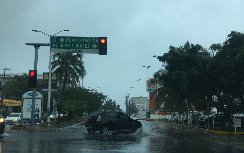 What You Need to Know About Driving in the Yucatan Peninsula, Mexico - Tropical Rain