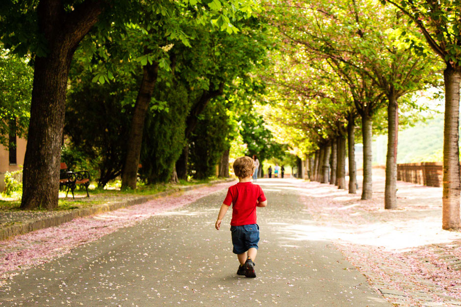 toddler walking in budapest