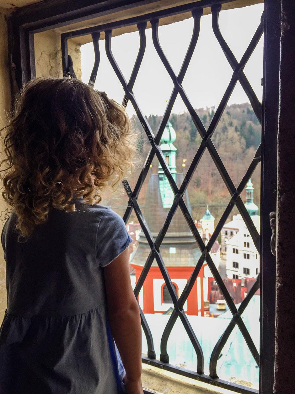 View from castle tower in Loket Czech Republic