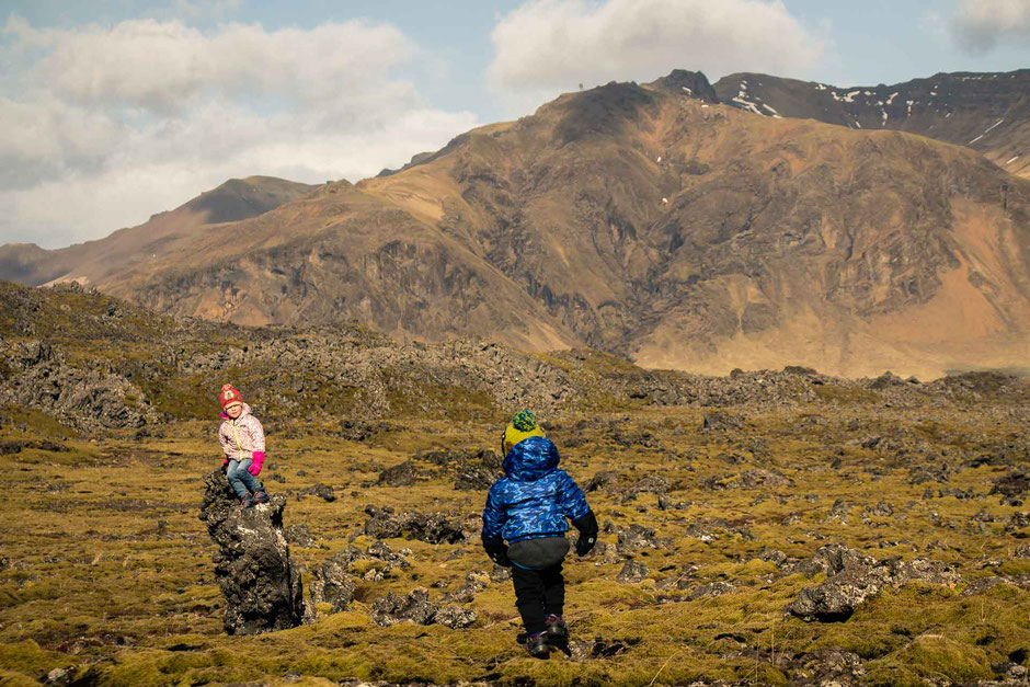 Berserkjahraun Lava Fields in Iceland with Kids