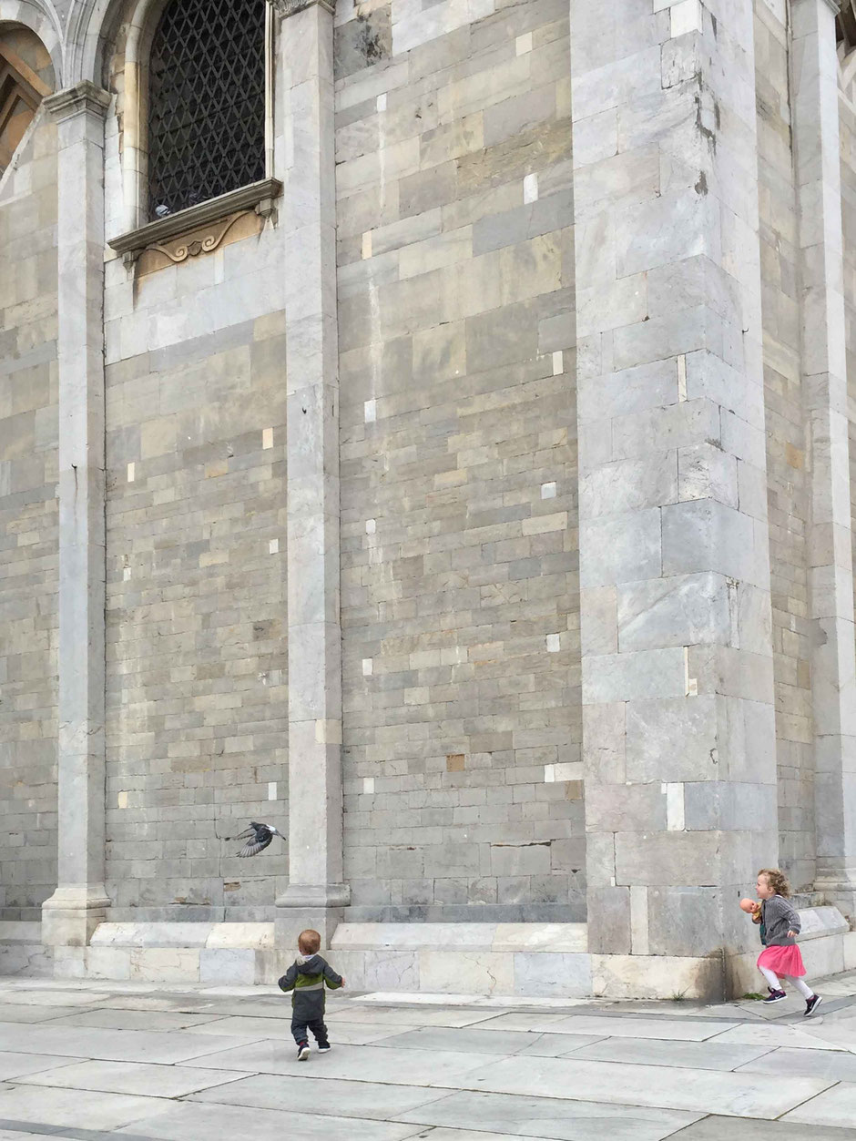 Kids chasing pigeons at the Campo dei Miracoli in Pisa, Italy