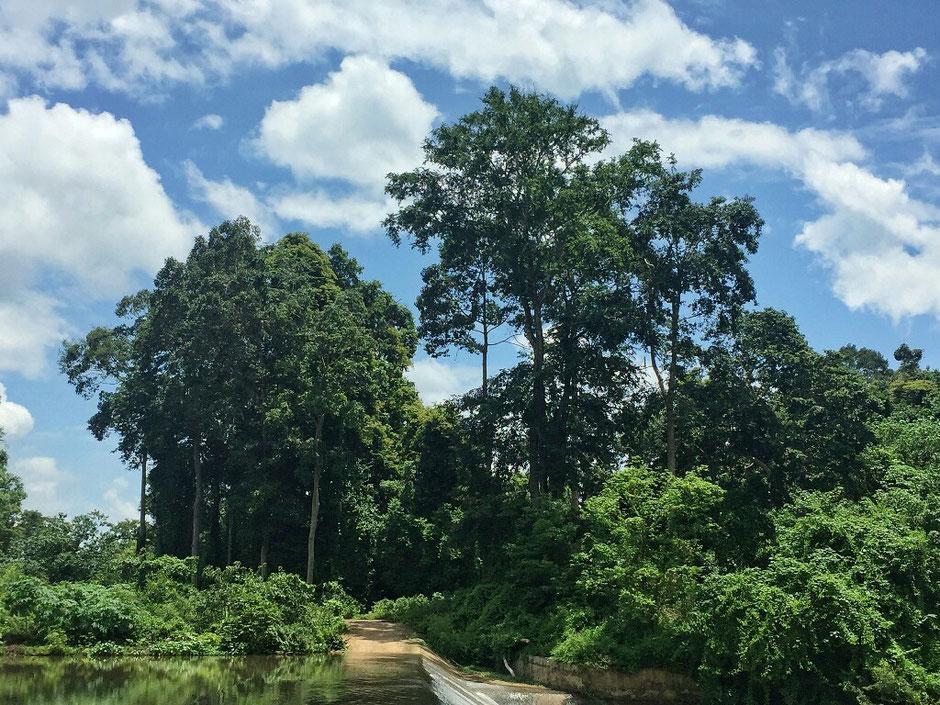 Erkundungstour - zentrales Hochland  - Vietnam – Erkundungstour – Ly und Heiko – Viethouse – Tour – Erfahrungen – Reisetipp – Urlaub – Abenteuer – Wasser - Fluss - Dac Lac – blauer Himmel – Wolken – See – Urwald - Buon Ma Thuot