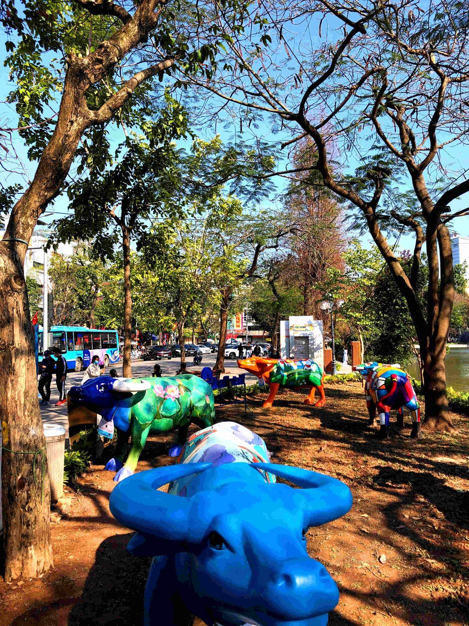 Herde-lebensgroßer-Wasserbüffel-Skulpturen-in-Hanoi-Hoan-Kiem-Lake-TET-Fest-2021