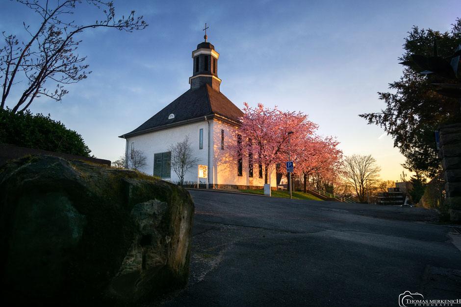 Evangelische Kirche in Bensberg mit Kirschblüten
