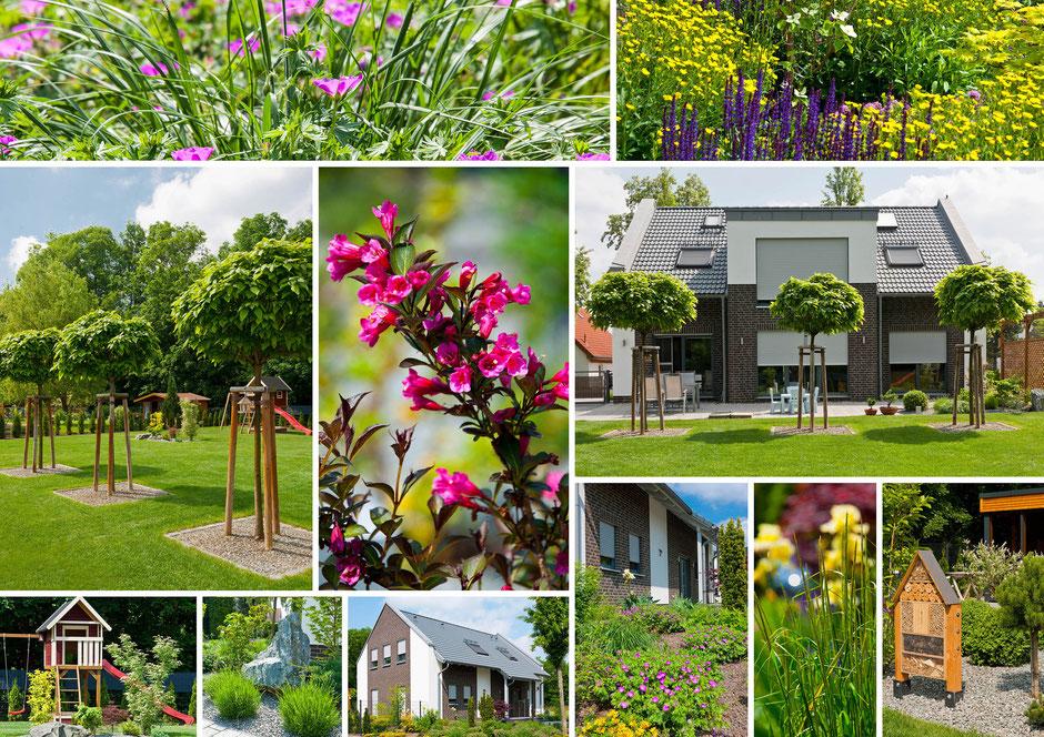 Fotomontage, Gartenanlage Einfamilienhaus in Dessau