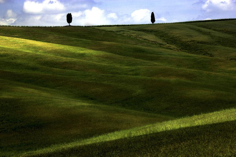 Delphicaphoto Paesaggi della Toscana, Chianti, Val d'Orcia e Val d'Arbia