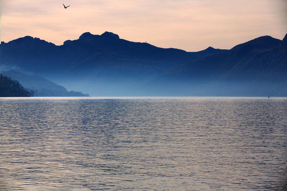 Delphicaphoto Foto di elementi naturali dal mare, alle montagne, al Lago di Como alla Svizzera