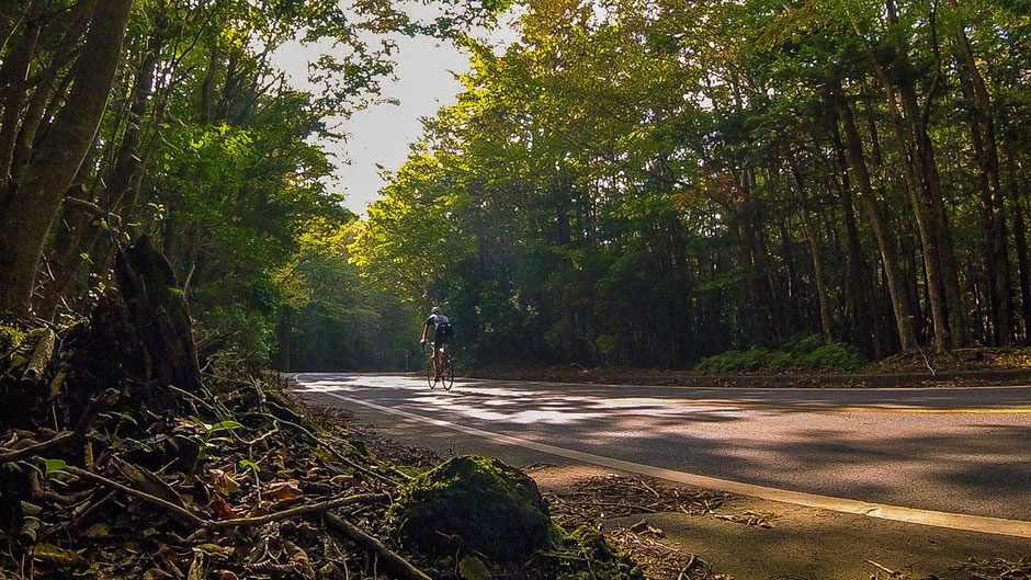 Bike-Tours-Japan-Fuji