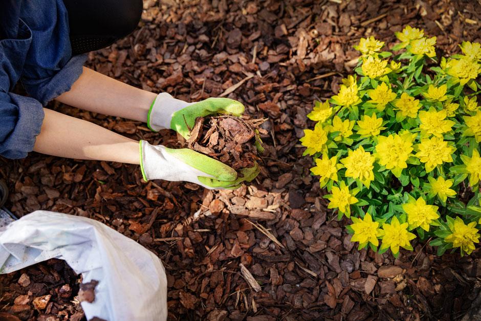 Garten Eden Rindenmulch grob oder fein, regional und nachhaltig produziert
