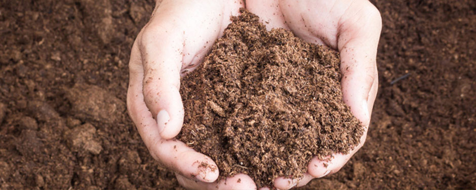 Landwirtschaft Plendl Lenksysteme Lenkhilfen TERRA CARE Reifendruckregelanlagen Kameras Agrar-Software Stickstoffdünger Bodenproben Hand