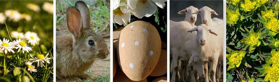 Gartenkeramik für Frühling und Ostern