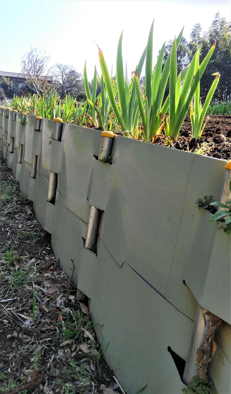 専門の土建屋に頼まなくても、日曜大工でかんたんに出来る地すべり防止用の土留鋼板をご紹介する写真入りページです。
