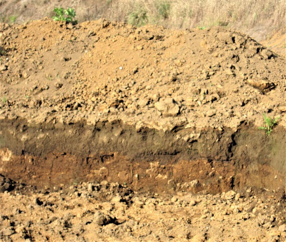 暗渠排水をする前に、自分の農地などの土質を調べてから暗渠の方法を検討するべきです。