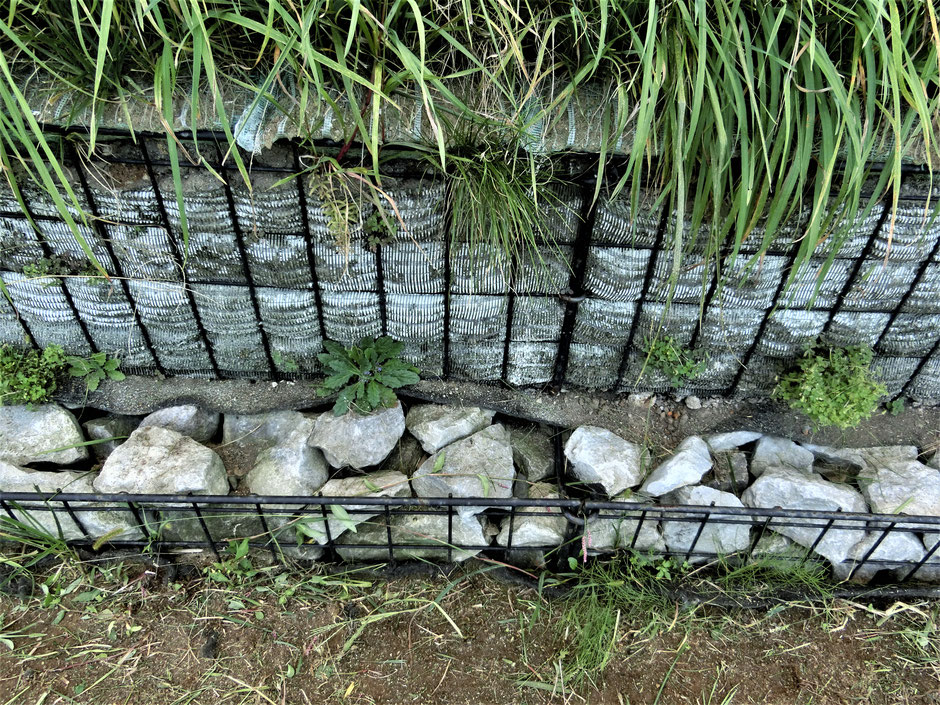 布団カゴを利用した場合には、カゴの網目から出ない大きさの砕石の用意が大変な場合があります。その場合には、写真の様に2段目以上は現場で発生した土を利用することが出来ます。