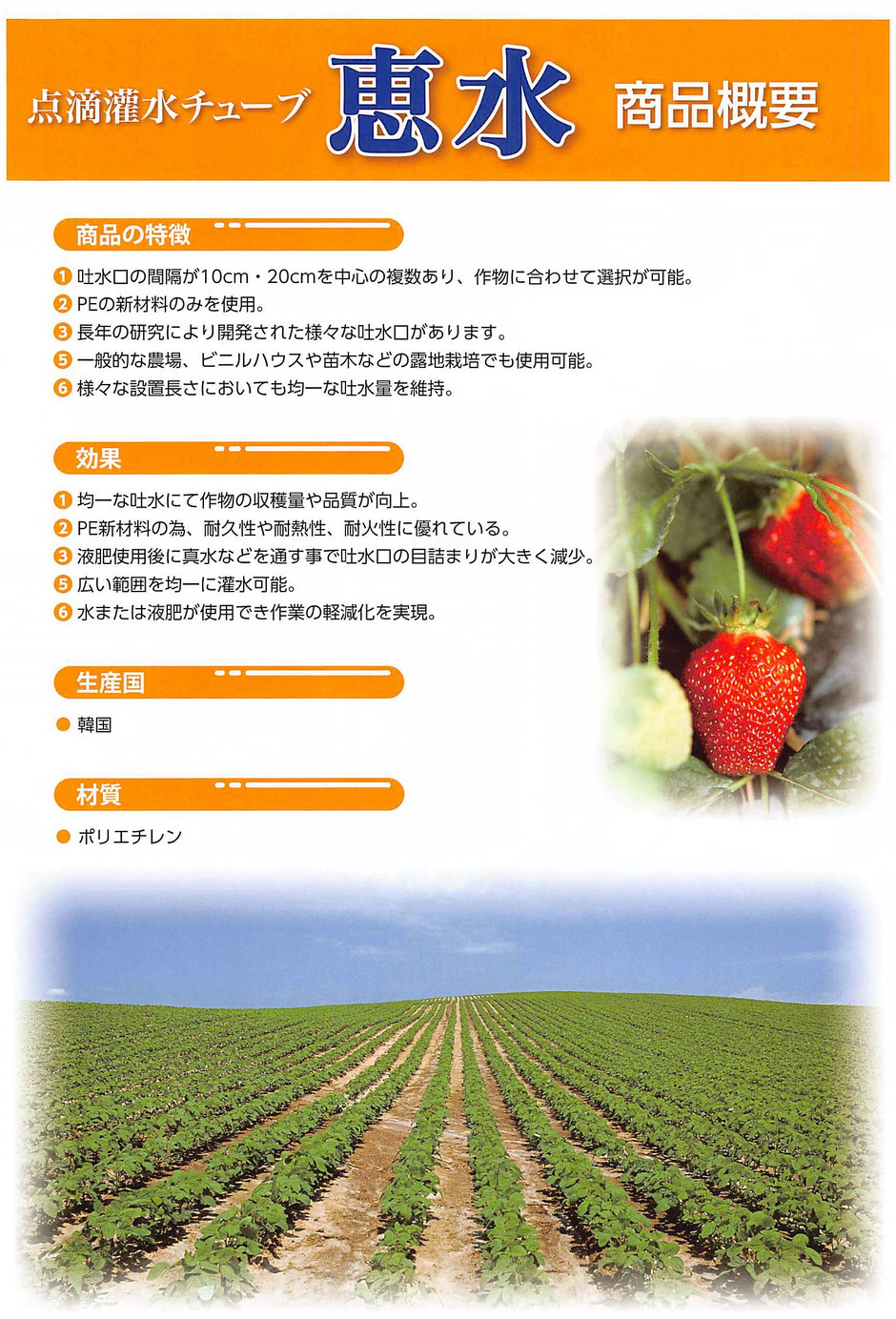 畑の作物に、水を供給する灌水チューブです。