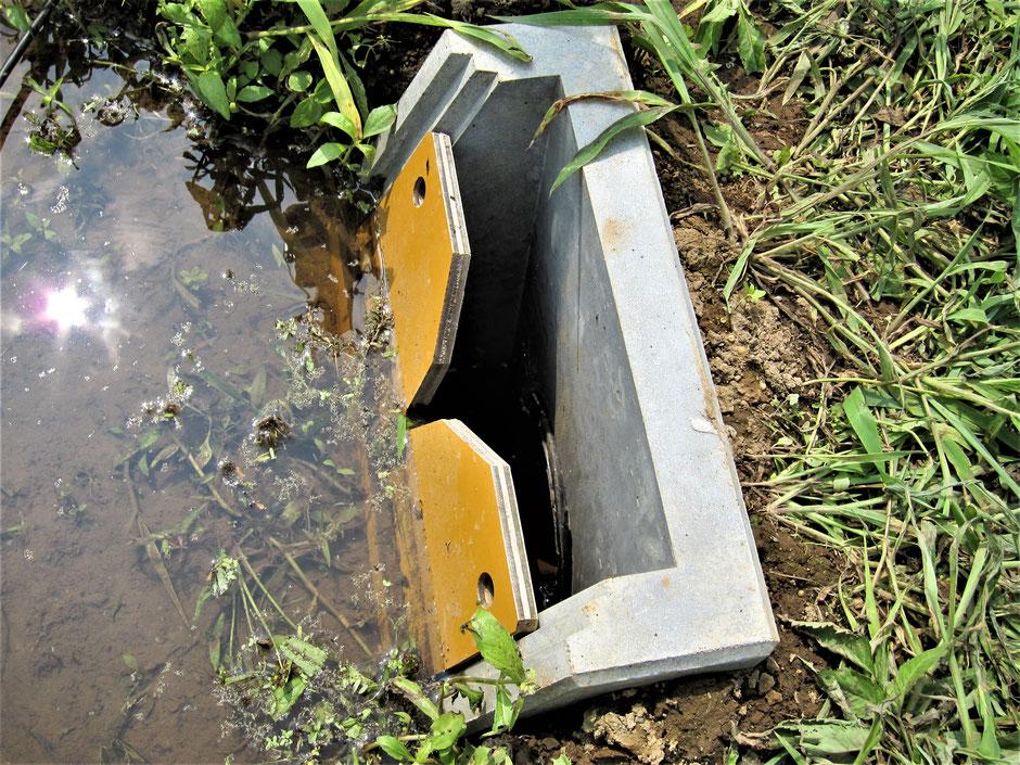 ゲリラ豪雨や、台風などによる豪雨災害による洪水災害から、コストを掛けずに少しでも水量を減らすために考案された、田んぼダムを写真付きでご紹介します。