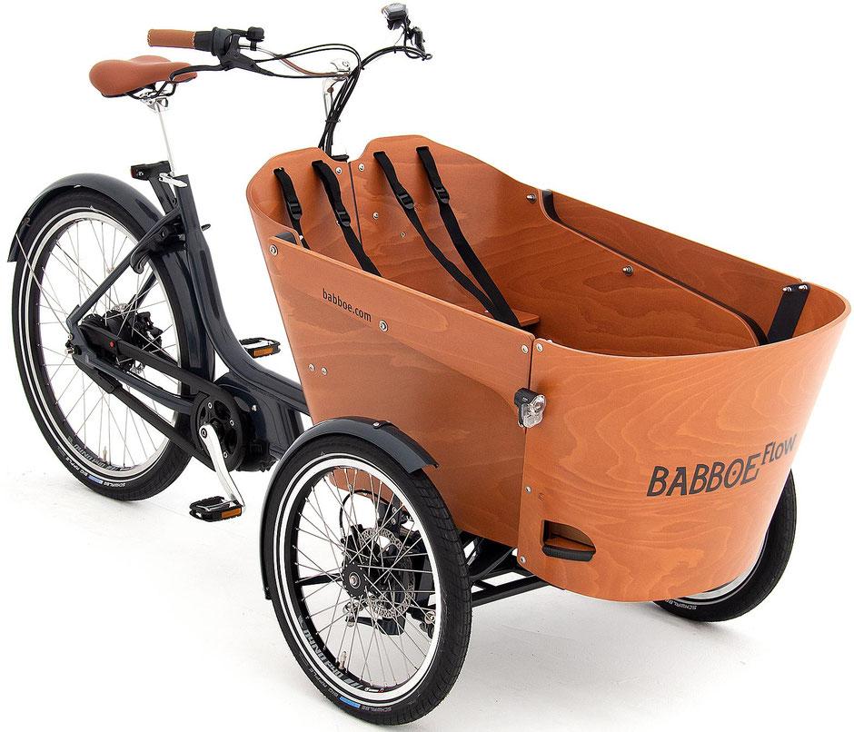 Babboe Flow Mountain Lasten e-Bike
