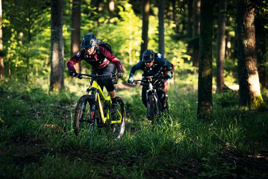 Bosch e-Mountainbike Motor 2020