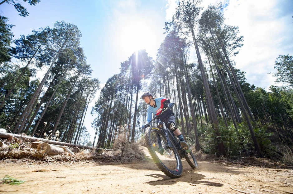 Yamaha e-Bike Neuheiten 2020