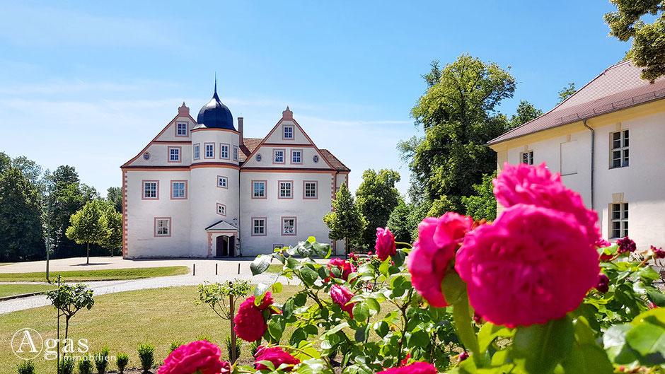 Immobilienmakler Königswusterhausen