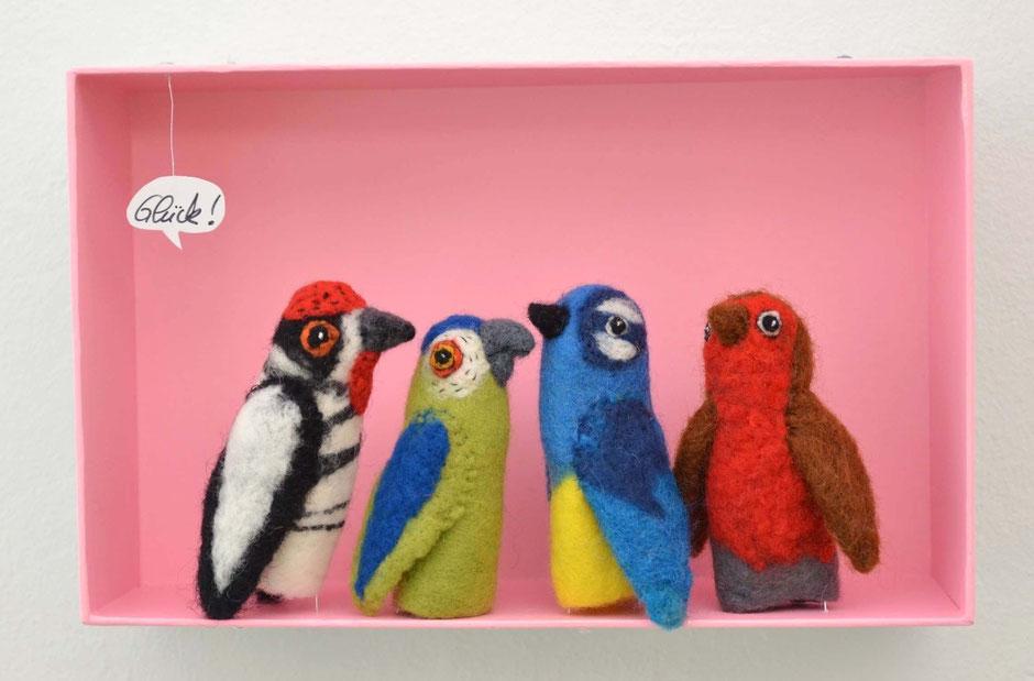 Specht, Papagei, Blaumeise und Rotkehlchen
