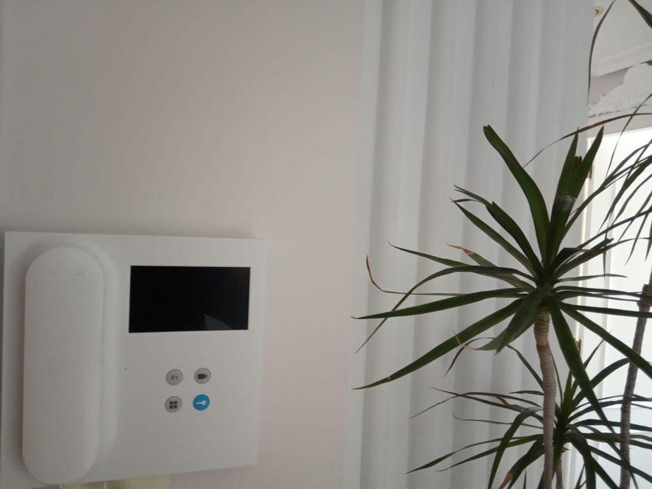 Monitor de videoportero VEO de fermax sobre pared de color avellana y plantas decorativas a un lado.