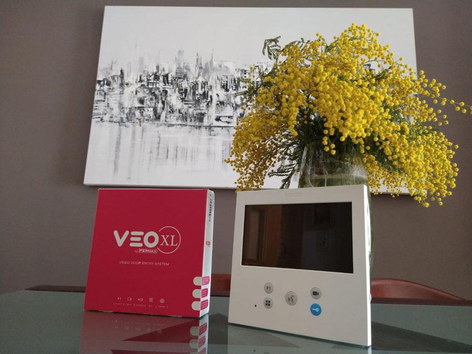 Composición con el nuevo VEO-XL DUOX PLUS de Fermax con flores y cuadro de fondo