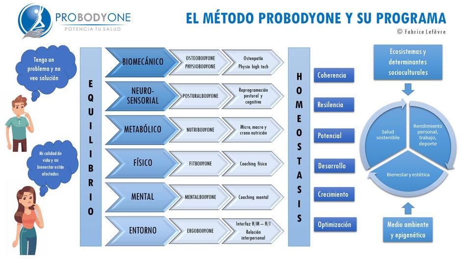 osteopatía; posturología; nutrición; coaching; entrenamiento; reprogramación postural;