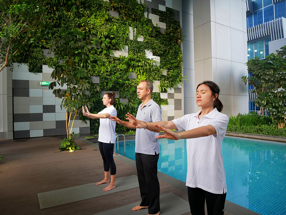 The levitise team performing the qi gong energy push at sbf center