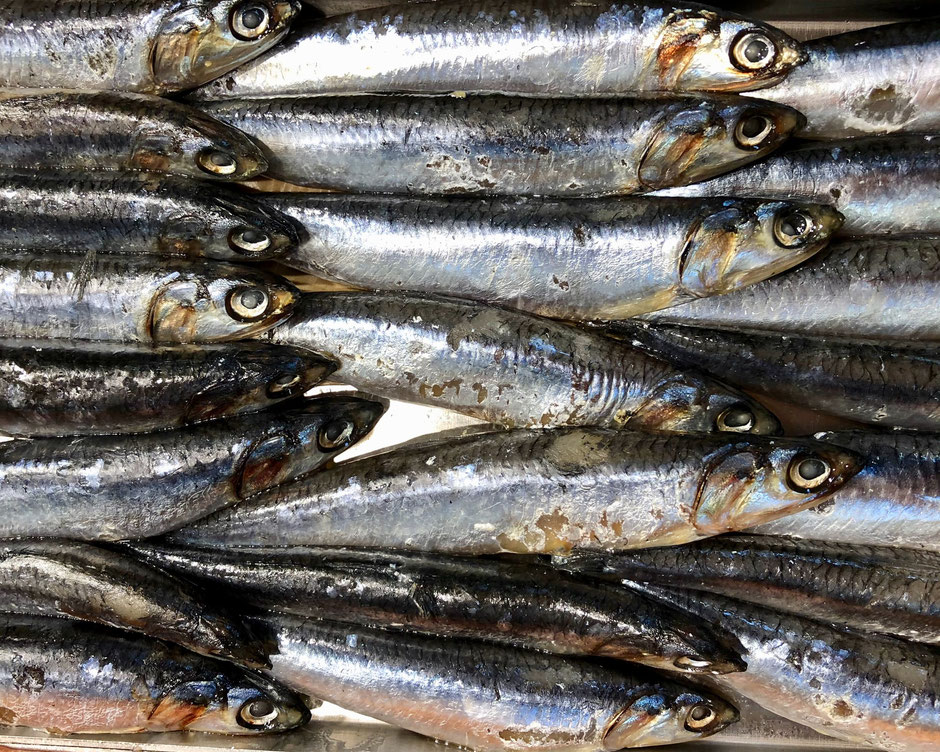 Small, wild caught fish, like anchovies, mackerel, herring and sardines are better for your health, less toxic than larger fish, and more sustainable.