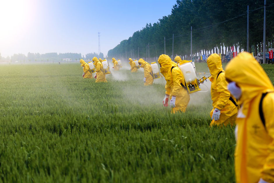 Upgrade your health by reducing your toxic load. Ignoring the science what does your common sense radar tell you about pesticide spraying on your food when you see this picture?