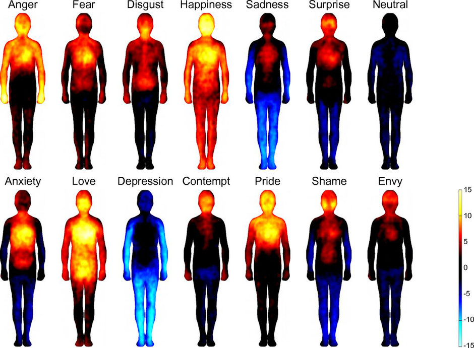Research published in 2014 in the Proceedings of the National Academy of Sciences journal reveal that different emotional states are associated with topographically distinct and culturally universal bodily sensations.