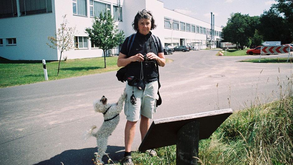 Auf dem Jean-Paul-Weg am Rande von Röslau – Stationstafel 50 »Wieviel Dinge braucht der Mensch?«
