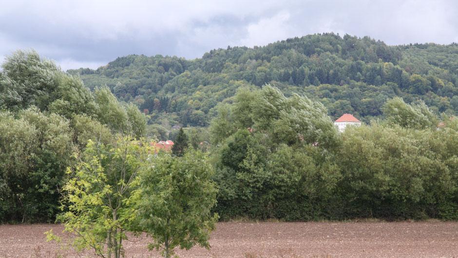 Schloss Goldkronach