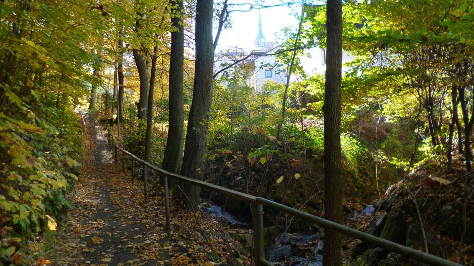 Jetzt entlang am Mühlbach in Eckersdorf ...