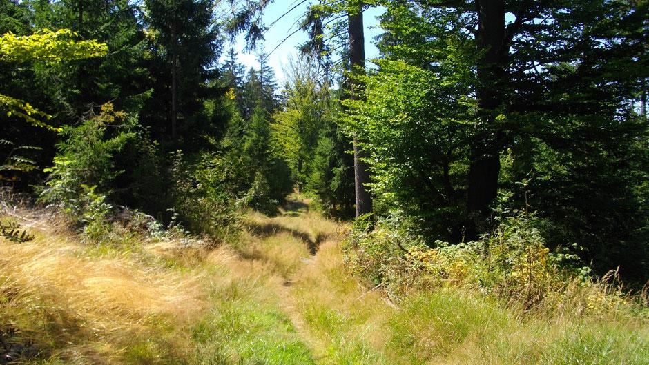 Von der Luisenburg nach Nagel