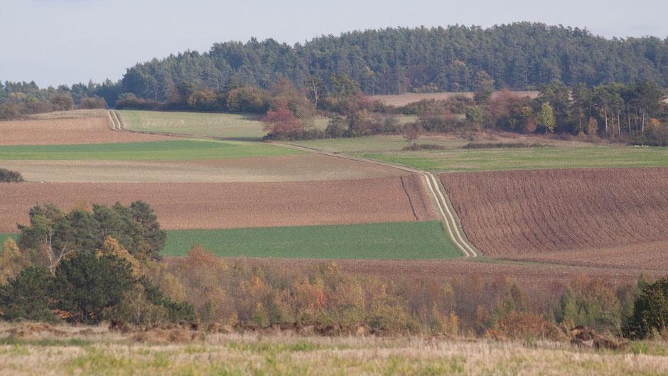 Blick zurück über Alladorf,  das unten – hier unsichtbar – im Lochautal liegt, hinweg auf die gegenüberliegende Höhe mit (gestern gewandertem) Markgrafenweg