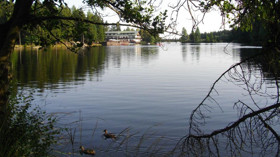 Der Fichtelsee – hinten das Waldhotel mit Seeterrasse