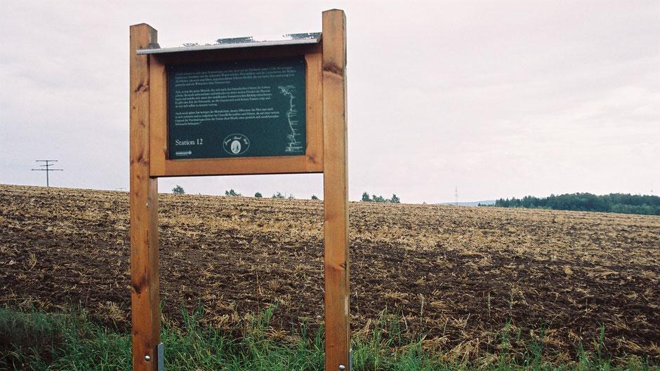 Auf dem Jean-Paul-Weg, Stationstafel 21 oder 12, hinter dem Gewalt-Dorf Schwingen