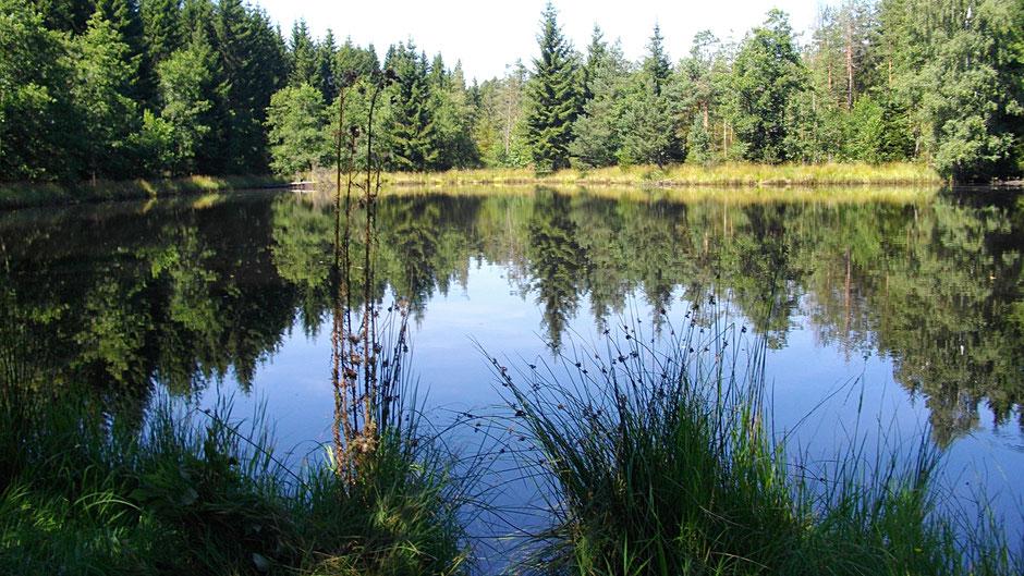 Der Gregnitz Seeweiher