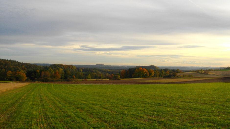 Arkadienweg Neustädtlein - Braunstein - alter Markgrafenweg - Alladorf (sehr schön)